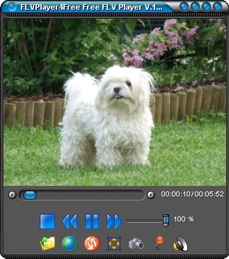 FLVPlayer4Free gratis