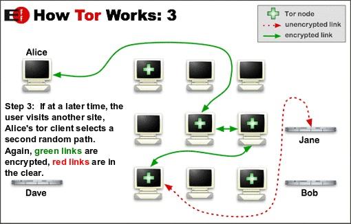 Tor downloaden