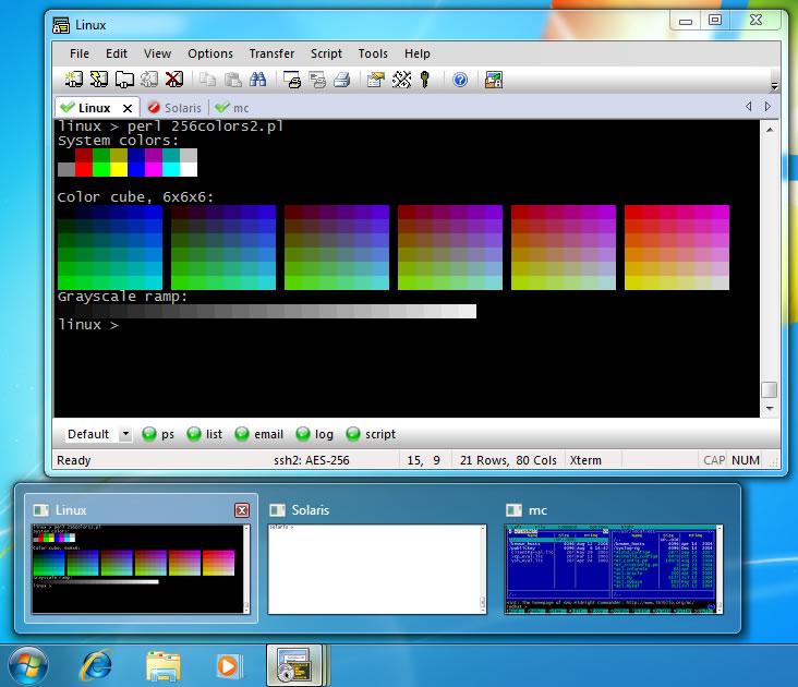 SecureCRT gratis downloaden